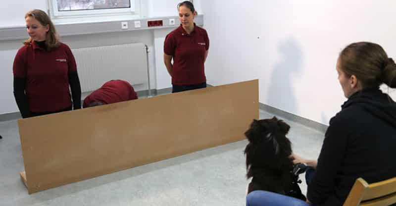 Forskning i hur mycket hundarna förstår oss