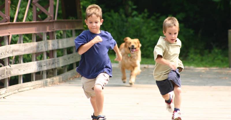 Hund springer efter barn