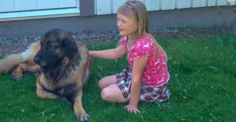 Hund vänder sig bort från en flicka