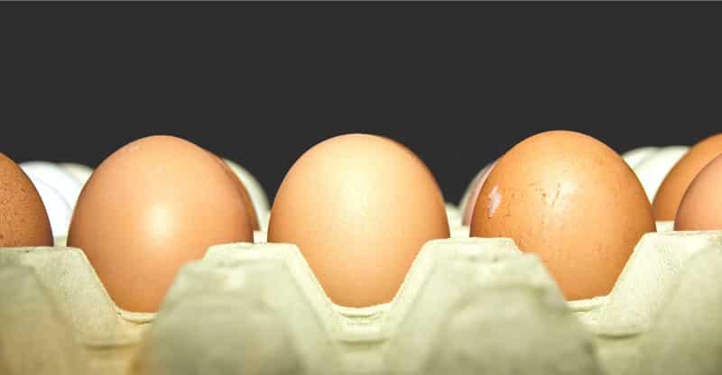 Kartong med bruna ägg
