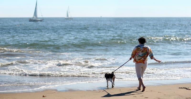 Kvinna går med hund på stranden
