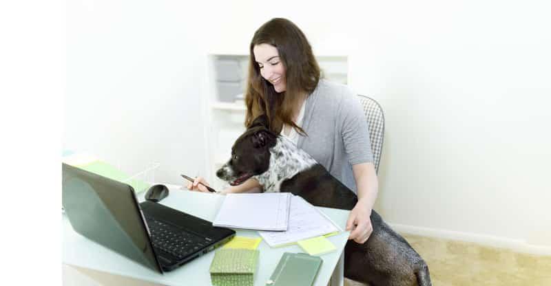 Kvinna jobbar medan hunden ligger knäet