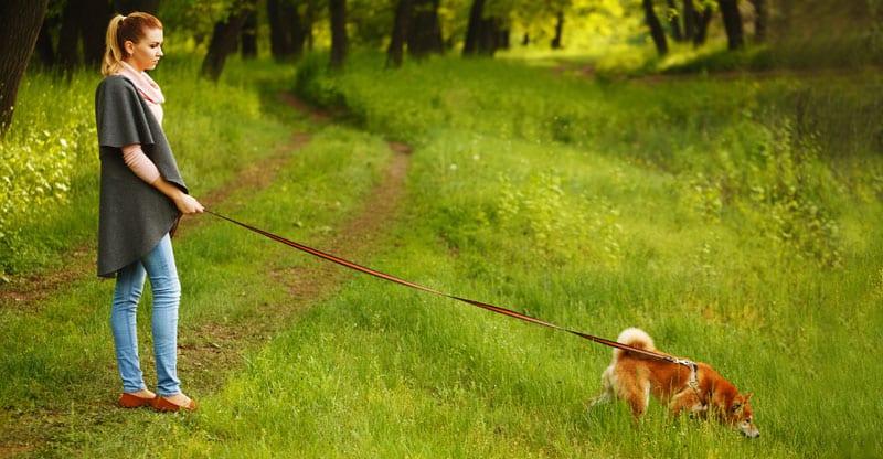 Kvinna rastar sin hund