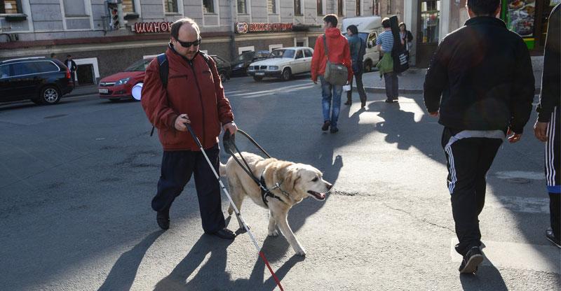 Ledarhund går med sin förare
