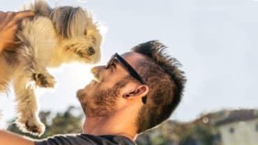 Man lyfter upp liten hund