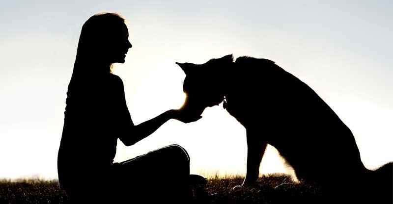 En siluett av en kvinna och en hund