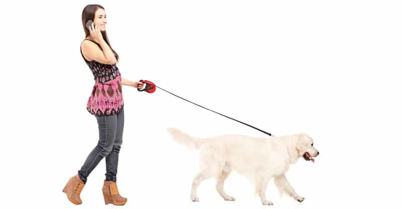 Kvinna på hundpromenad som pratar i mobiltelefon